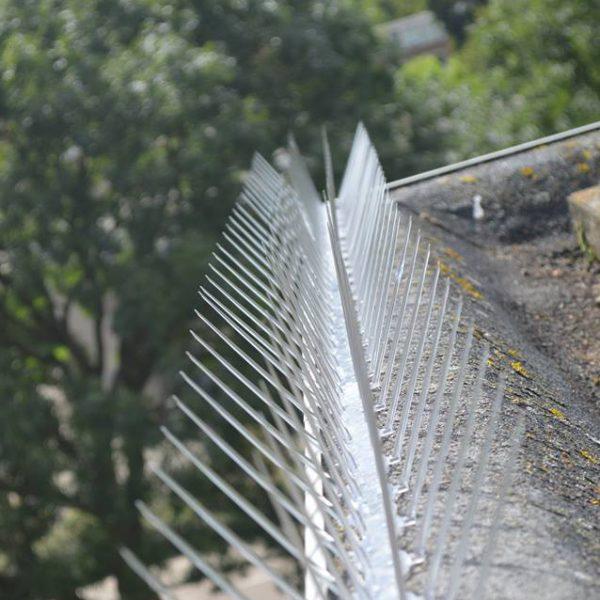 Duivenpinnen laten plaatsen op dakrand kantoorgebouw