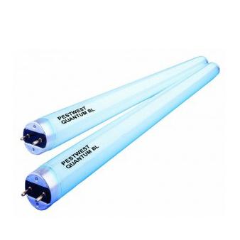 Lamp voor vliegenlamp TL buis F40W/2FT/T12/BL368