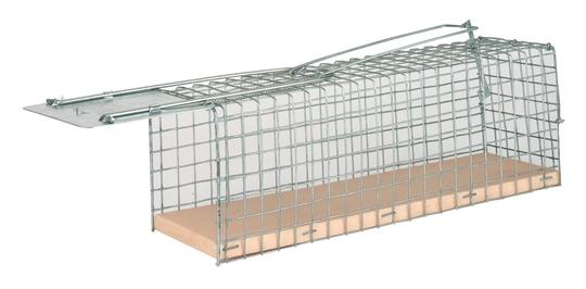 Rattenval Correct diervriendelijk levend